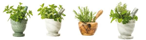 zázračné látky v rastlinách