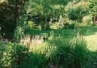 Prírodná jedlá a liečivá záhrada. Urobte si takú aj vy!