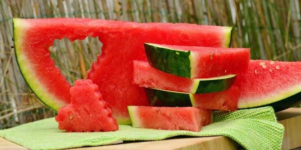 ovocie melón