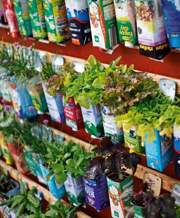 bylinková a šalátová stena