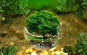 Viete, aká je vaša ekologická stopa?
