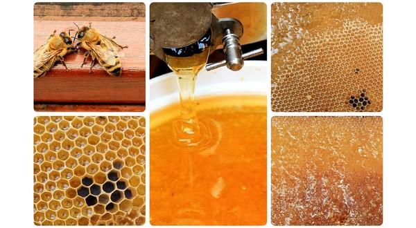 kvalitný med