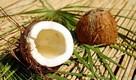 kokos krása