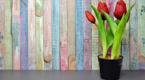 umelé kvety tulipány