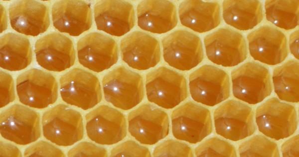 Medové tipy pre pokožku