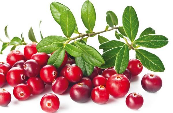 Lesk na pery z brusnív má úžasnú chuť, vôňu a dodá vaším perám farbu:-)