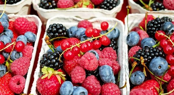 liečivé ovocie