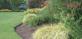 ako správne zavlažovať 7 tipov pre krajší trávnik
