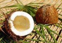 Kokos pre krásu. 44 skvelých a osvedčených tipov