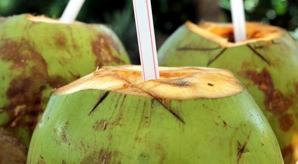 kokosové mlieko