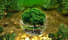 ekologická stopa