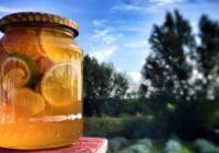 3 medové recepty na boj proti chrípke ana boľavé hrdlo