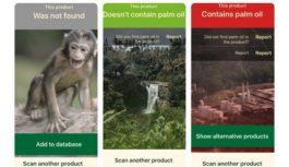 Palmový olej. Aplikácia na mobile vám odhalí jeho prítomnosť