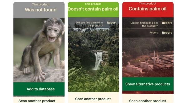 aplikácia palmový olej