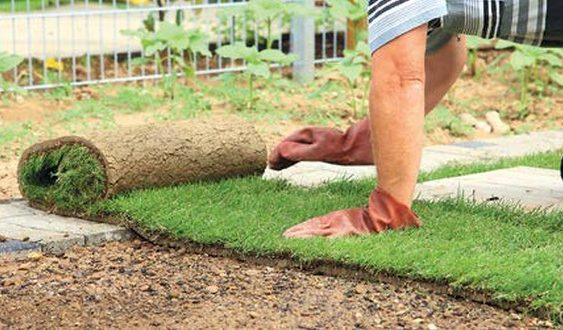 pokladáme trávnikový koberec