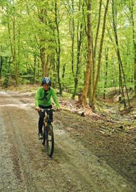 cyklotrasa v Medveďom údolí