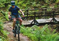 Tipy na cyklotrasy. 2 malokarpatské okruhy