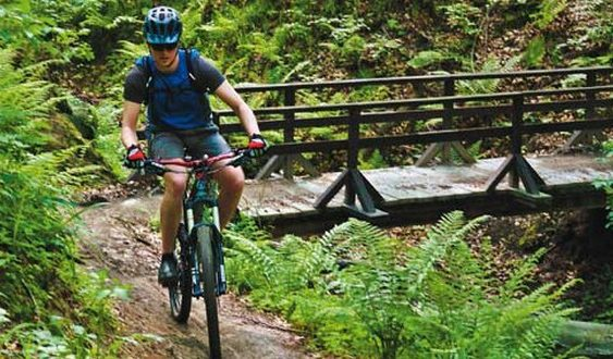 cyklotrasy Malokarpatské okruhy