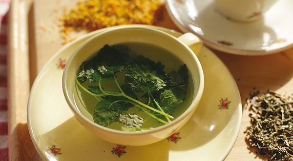 medovkový čaj recepty z medovky