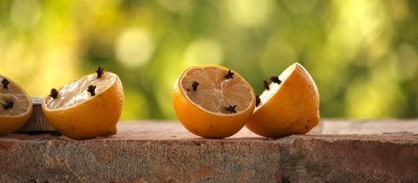 citrón a doň napichané klinčeky