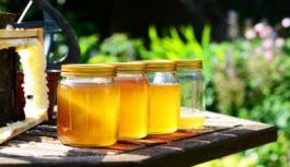 Liečivý med. Ktorý druh na aké zdravotné problémy?