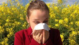 Deti bez alergií. Viete, ako využiť tzv. imunitné okno?