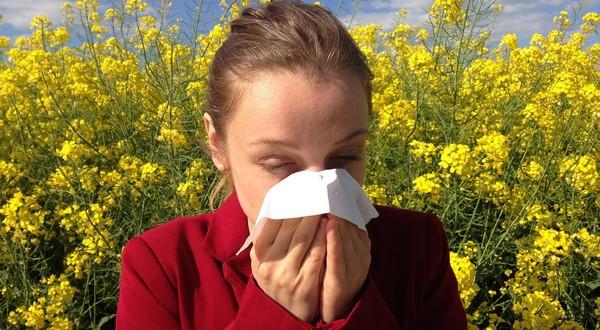 alergie imunitné okno