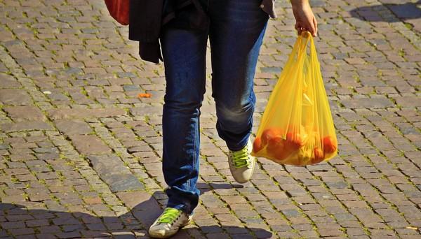 igelitová taška s ovocím