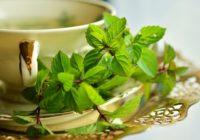 Čaje pre zdravie. 6 nálevov na detox, trávenie, či prechladnutie