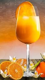 nápoj drink pomaranč mandarínka