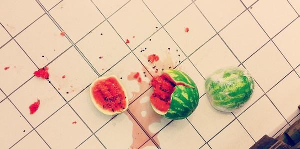 melón na zemi