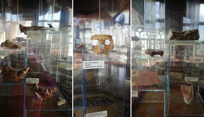 jaskyňa Domica nálezy