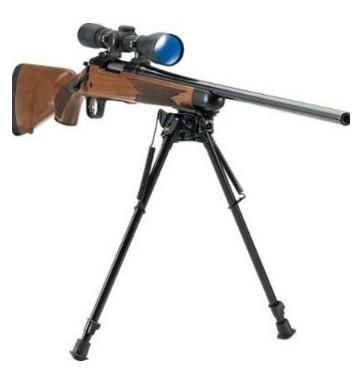 poľovnícke palice a zbraň
