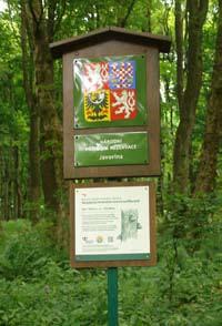 Národná prírodná rezervácia Javořina