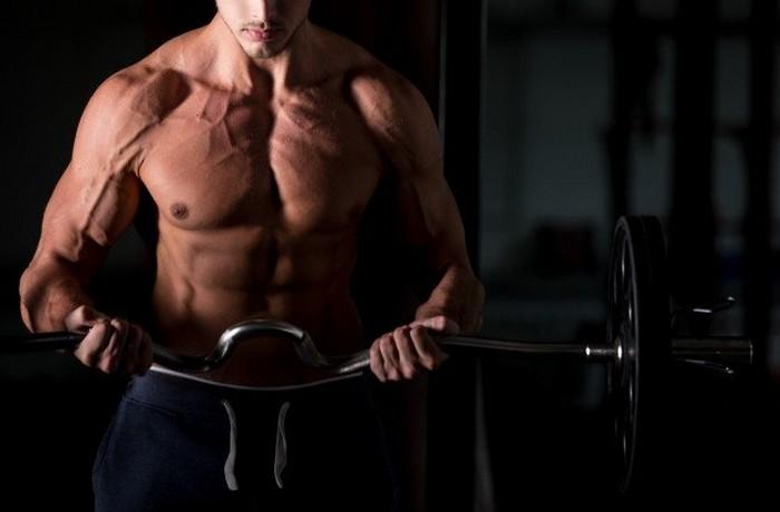 7 rád, ako rýchlo nabrať svalovú hmotu