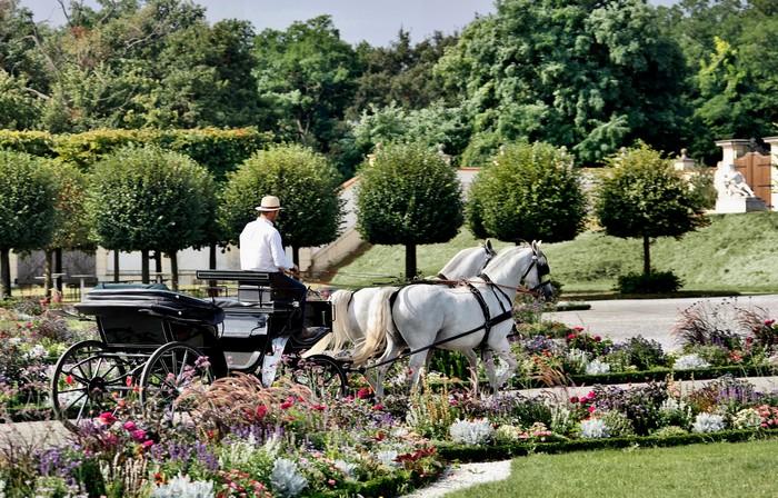 tip na výnimočný výlet na zámku Schloss Hof