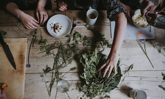 zber, triedenie a sušenie byliniek