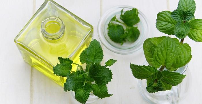 mäta - 10 liečivých rastlín pre krajšiu pleť
