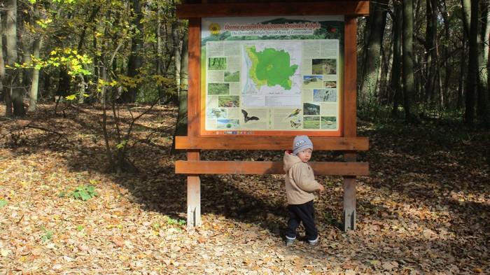 deti a láska k prírode