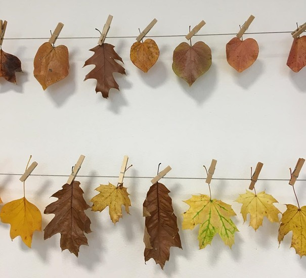 jesenné dekorácie - listy zo stromu