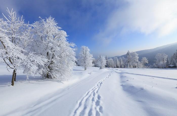 ako si vybrať dobrú lyžovačku