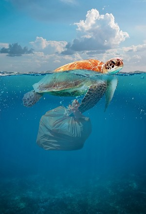 ako sa zbaviť plastov?