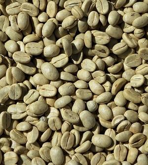 zrnká zelenej kávy