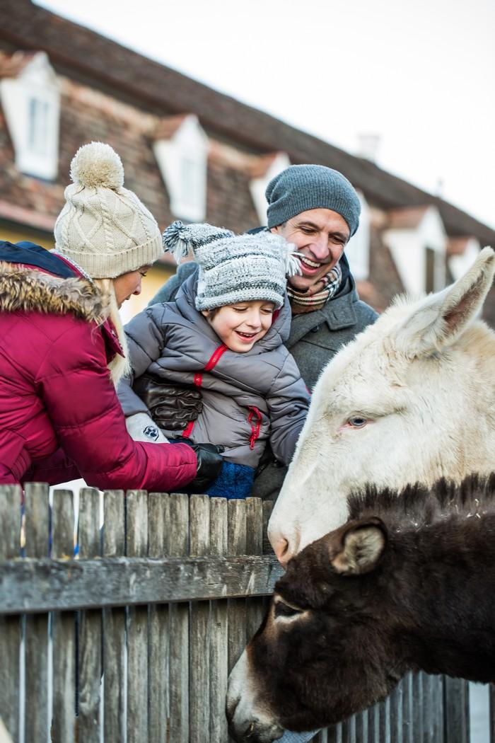 rodinný výlet na Schloss Hof - program