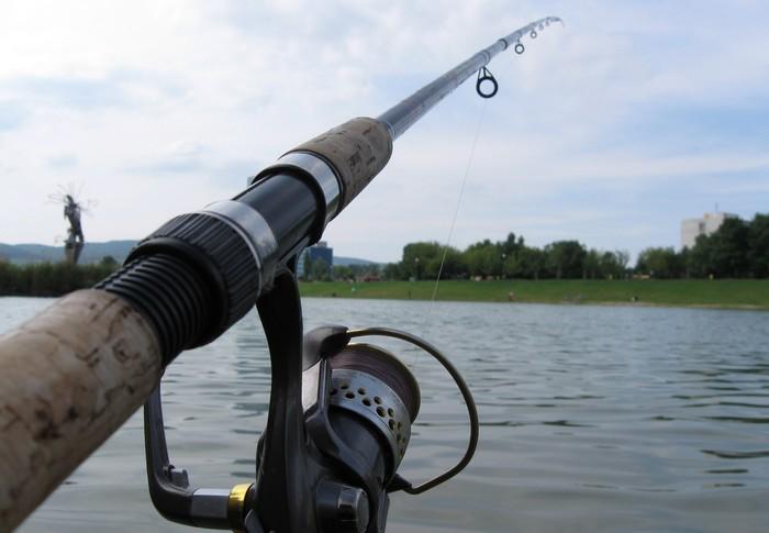 udica na správne rybárčenie