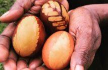 farbenie vajíčok na prírodno