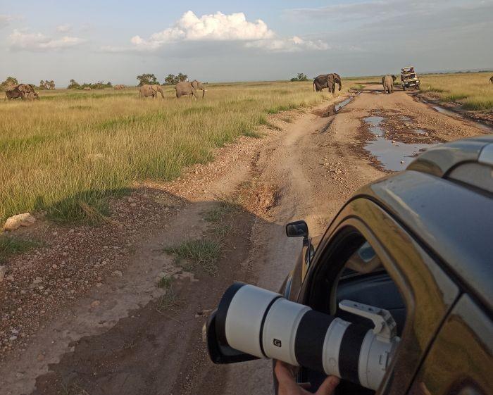 Keňa safari