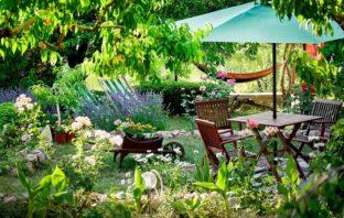 zlepšite si deň na záhrade