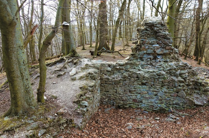 Zabudnuté hrady Malých Karpát - Dračí hrádok