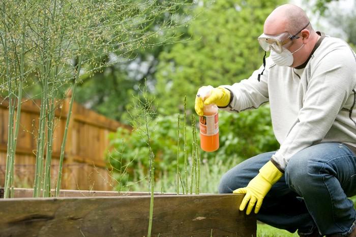 15 škodcov a chorôb